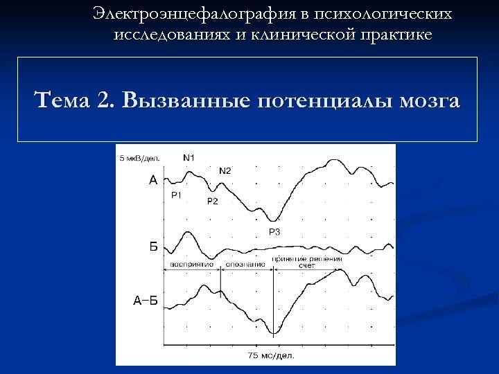 Электроэнцефалография в психологических исследованиях и клинической практике Тема 2. Вызванные потенциалы мозга