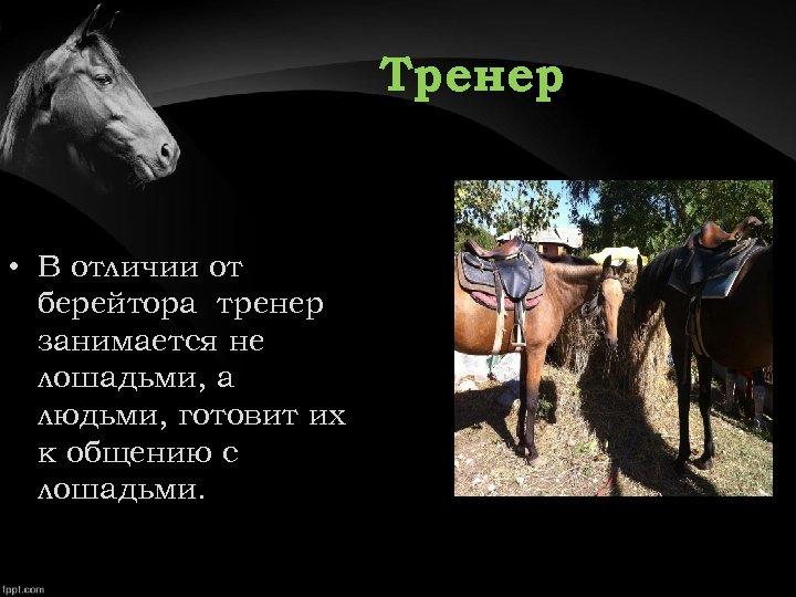Тренер • В отличии от берейтора тренер занимается не лошадьми, а людьми, готовит их