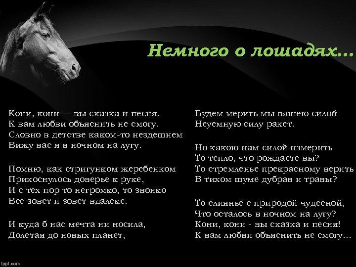 Немного о лошадях… Кони, кони — вы сказка и песня. К вам любви объяснить