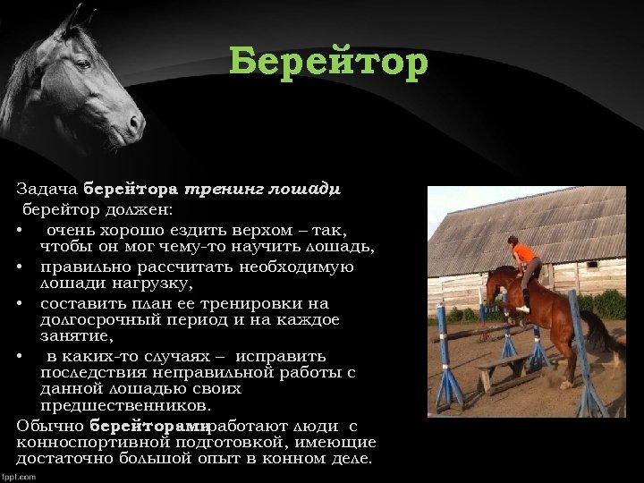 Берейтор Задача берейтора тренинг лошади , берейтор должен: • очень хорошо ездить верхом –