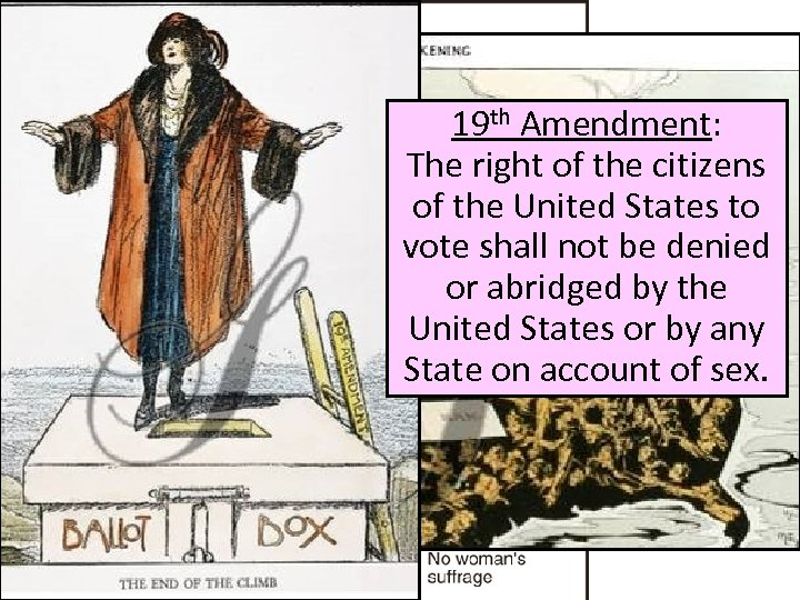19 th Amendment: The right of the citizens of the United States to Women's