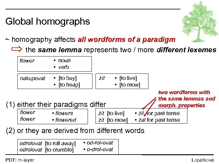 Global homographs ~ homography affects all wordforms of a paradigm the same lemma represents