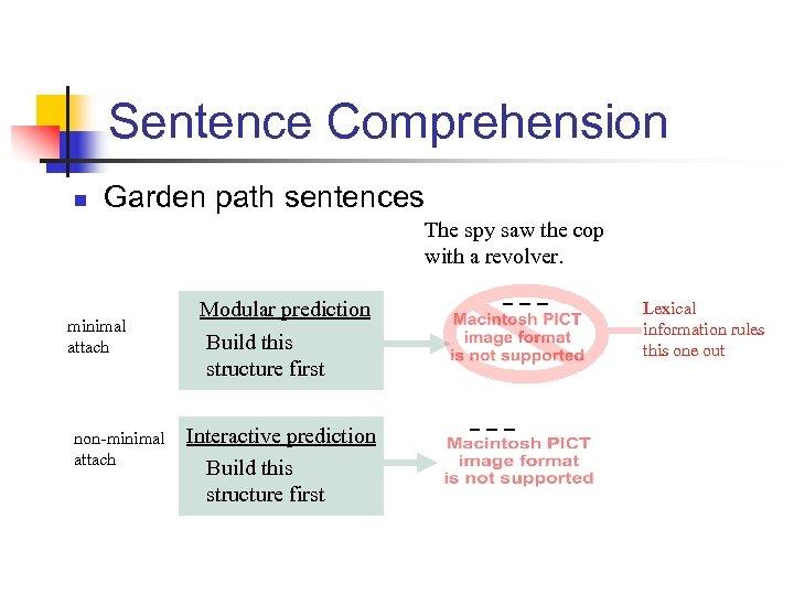 Sentence Comprehension n Garden path sentences The spy saw the cop with a revolver.