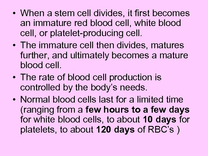 • When a stem cell divides, it first becomes an immature red blood