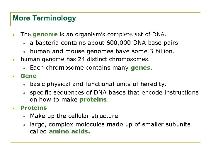 More Terminology • The genome is an organism's complete set of DNA. • •