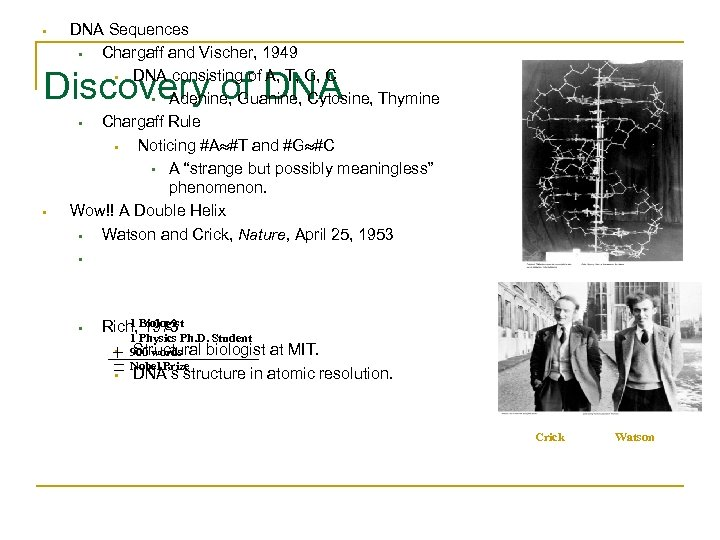 • DNA Sequences • Chargaff and Vischer, 1949 • DNA consisting of A,