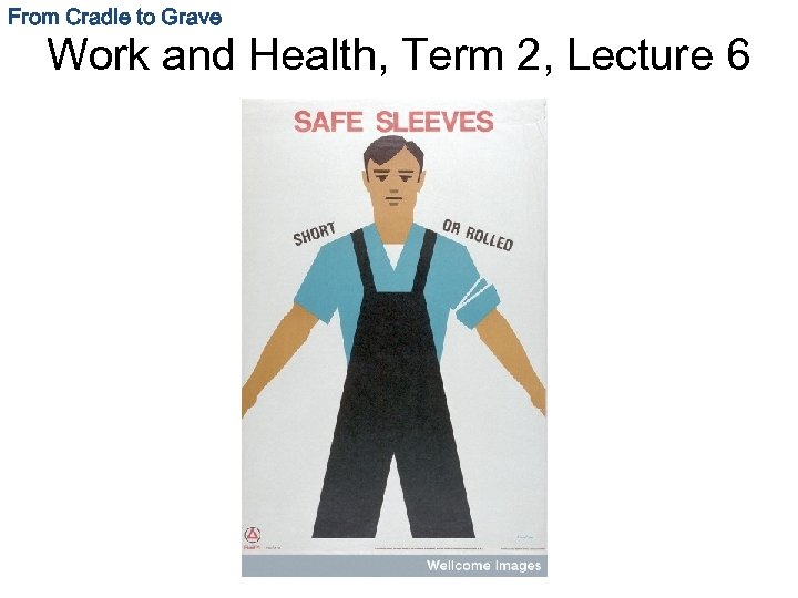 From Cradle to Grave Work and Health, Term 2, Lecture 6
