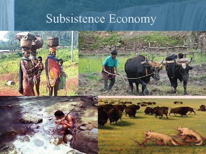 Subsistence Economy