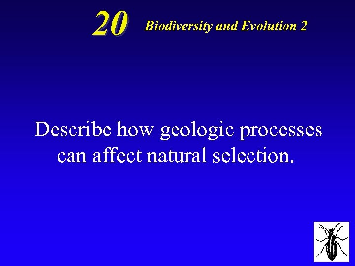 20 Biodiversity and Evolution 2 Describe how geologic processes can affect natural selection.