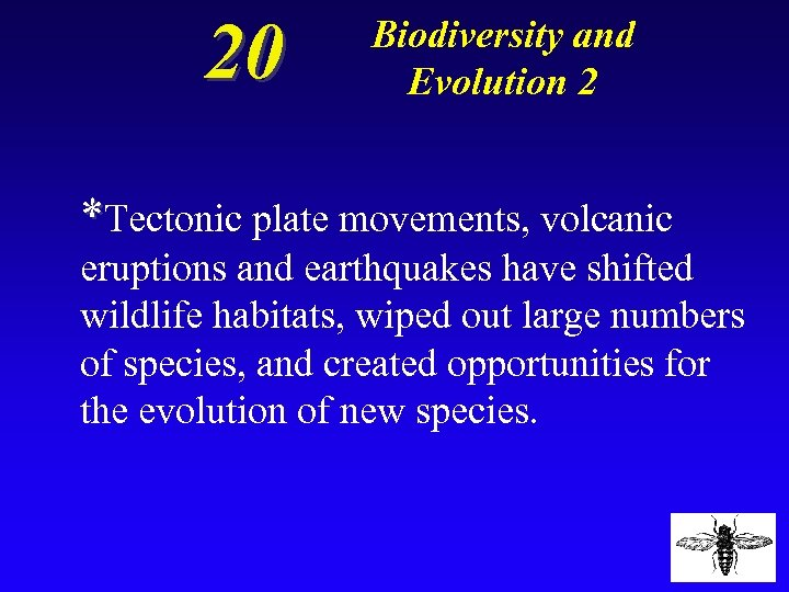 20 Biodiversity and Evolution 2 *Tectonic plate movements, volcanic eruptions and earthquakes have shifted