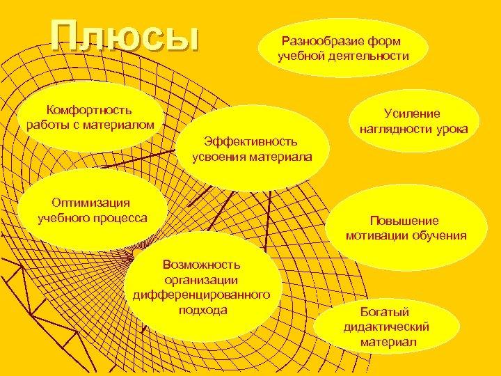 Плюсы Разнообразие форм учебной деятельности Комфортность работы с материалом Эффективность усвоения материала Оптимизация учебного