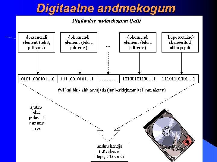Digitaalne andmekogum