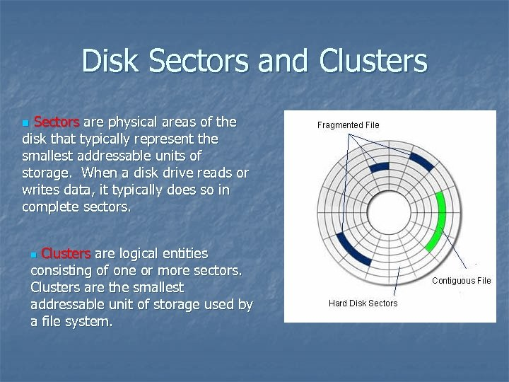 Disk Sectors and Clusters Sectors are physical areas of the disk that typically represent