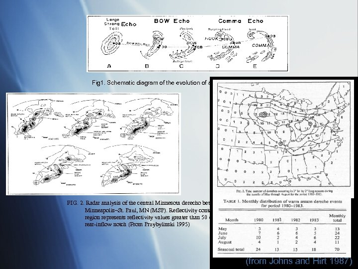 Fig 1. Schematic diagram of the evolution of a bow echo. (from Fujita 1978)