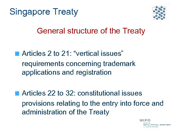 "Singapore Treaty General structure of the Treaty Articles 2 to 21: ""vertical issues"" requirements"