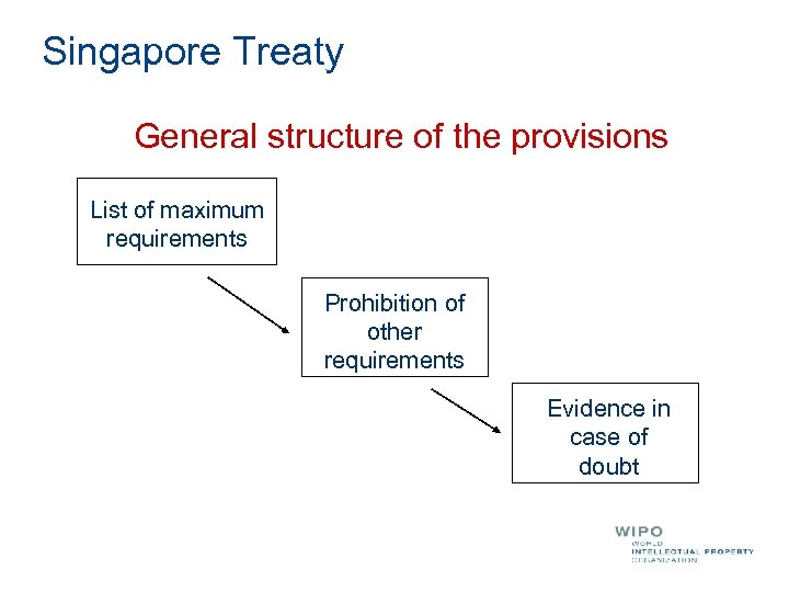 Singapore Treaty General structure of the provisions List of maximum requirements Prohibition of other