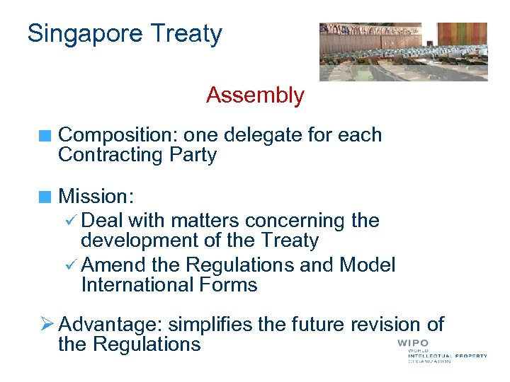 Singapore Treaty Assembly Composition: one delegate for each Contracting Party Mission: ü Deal with