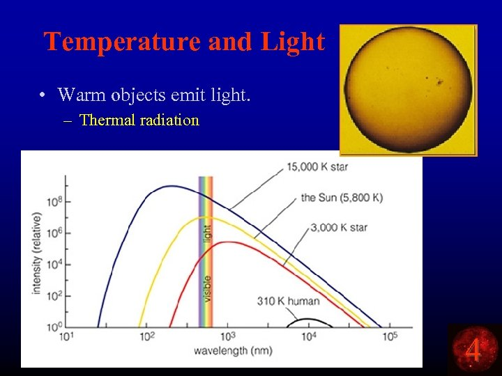 Temperature and Light • Warm objects emit light. – Thermal radiation 4