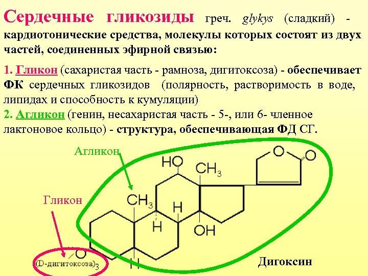 Ceрдечные гликозиды греч. glykys (сладкий) кардиотонические средства, молекулы которых состоят из двух частей, соединенных