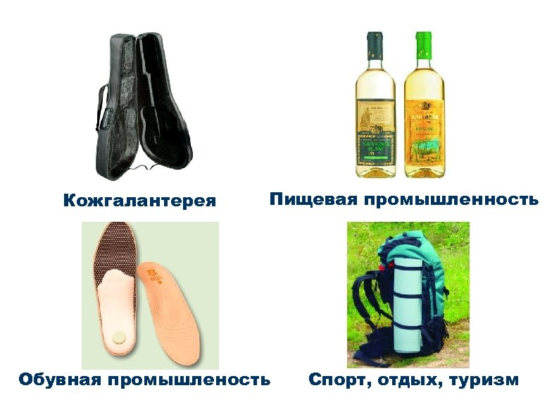 Кожгалантерея Пищевая промышленность Обувная промышленость Спорт, отдых, туризм
