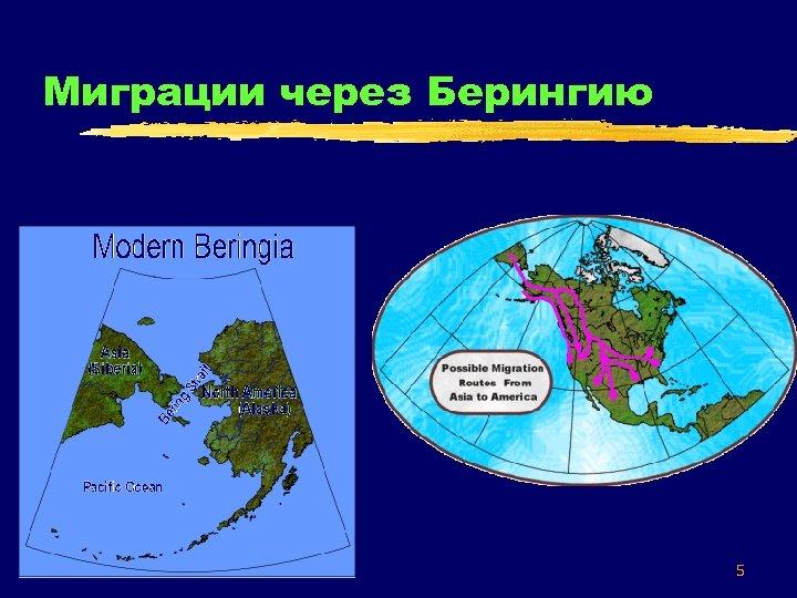 Миграции через Берингию 5