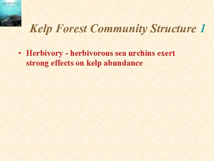 Kelp Forest Community Structure 1 • Herbivory - herbivorous sea urchins exert strong effects