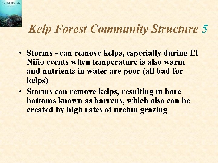 Kelp Forest Community Structure 5 • Storms - can remove kelps, especially during El