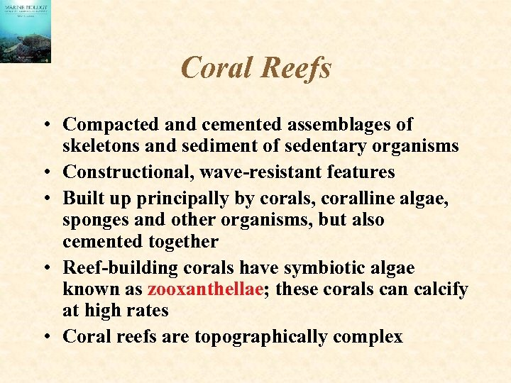 Coral Reefs • Compacted and cemented assemblages of skeletons and sediment of sedentary organisms
