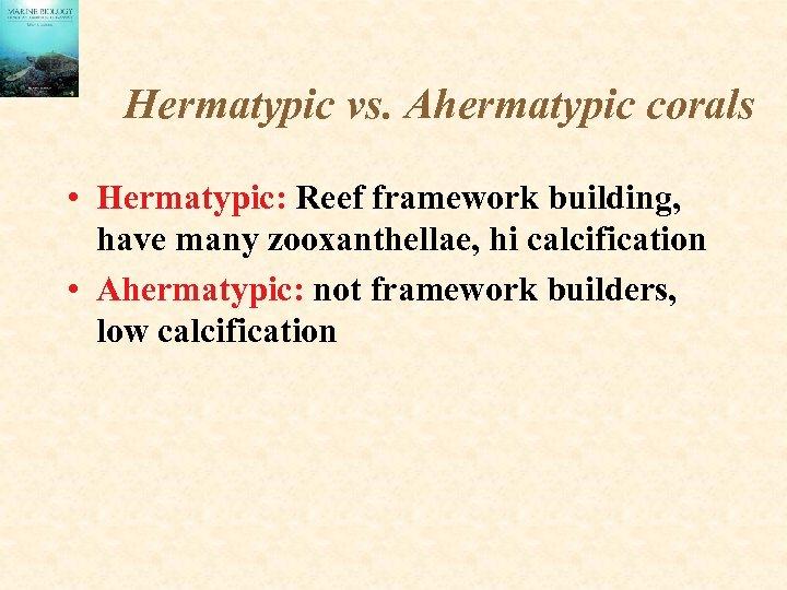 Hermatypic vs. Ahermatypic corals • Hermatypic: Reef framework building, have many zooxanthellae, hi calcification