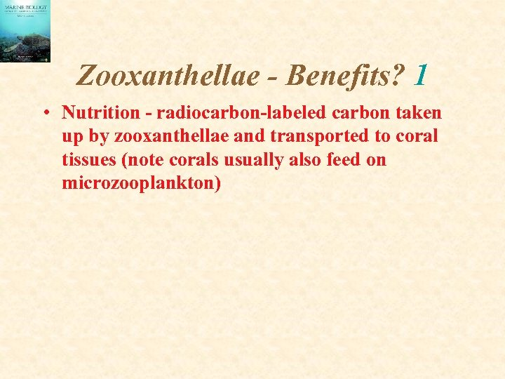 Zooxanthellae - Benefits? 1 • Nutrition - radiocarbon-labeled carbon taken up by zooxanthellae and