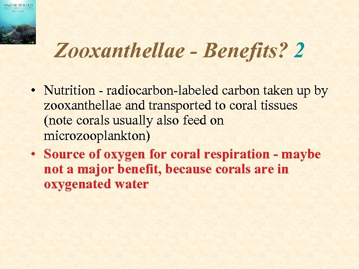 Zooxanthellae - Benefits? 2 • Nutrition - radiocarbon-labeled carbon taken up by zooxanthellae and