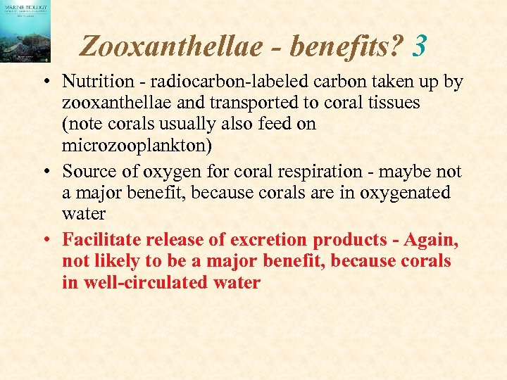 Zooxanthellae - benefits? 3 • Nutrition - radiocarbon-labeled carbon taken up by zooxanthellae and