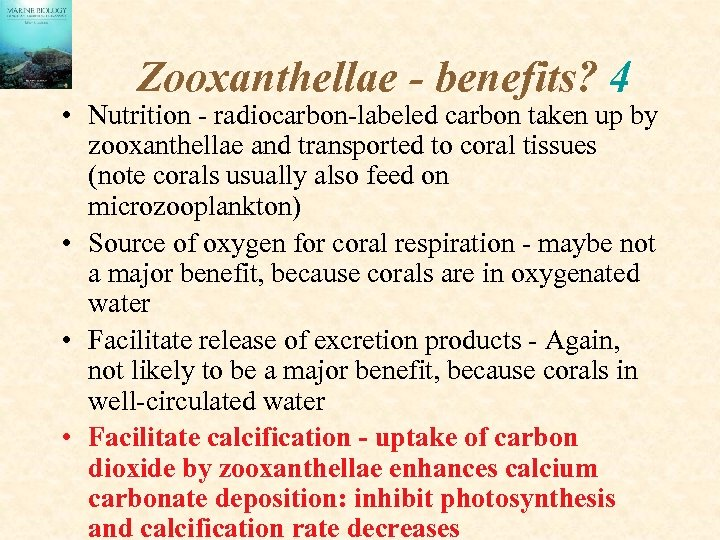 Zooxanthellae - benefits? 4 • Nutrition - radiocarbon-labeled carbon taken up by zooxanthellae and