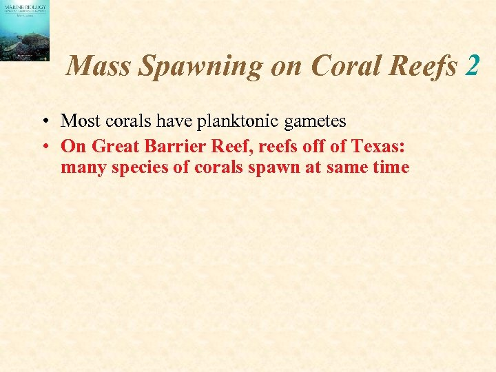 Mass Spawning on Coral Reefs 2 • Most corals have planktonic gametes • On