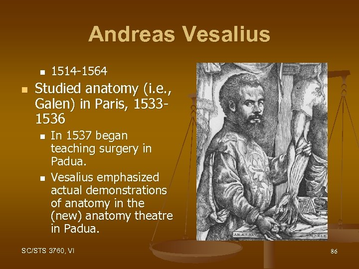 Andreas Vesalius n n 1514 -1564 Studied anatomy (i. e. , Galen) in Paris,