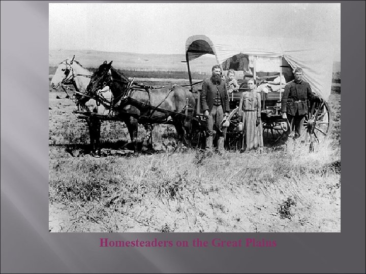 Homesteaders on the Great Plains