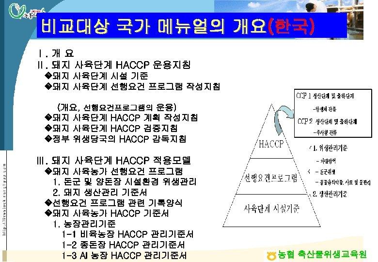 비교대상 국가 메뉴얼의 개요(한국) Ⅰ. 개 요 Ⅱ. 돼지 사육단계 HACCP 운용지침 �돼지 사육단계