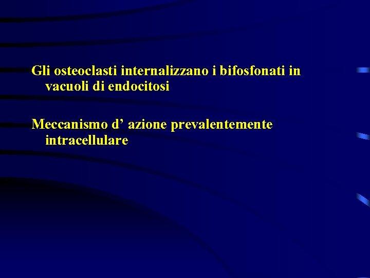 Gli osteoclasti internalizzano i bifosfonati in vacuoli di endocitosi Meccanismo d' azione prevalentemente intracellulare