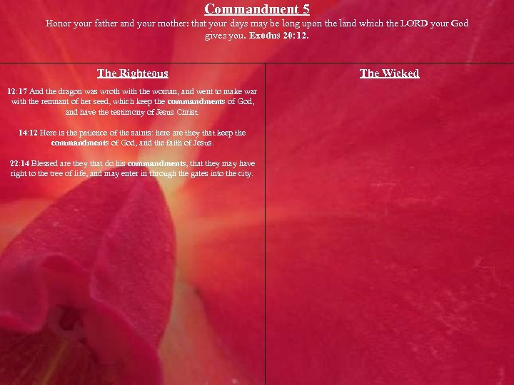 Commandment 5 Honor your father and your mother: that your days may be long