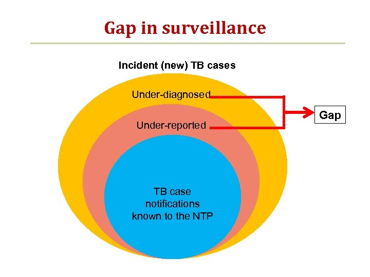 Gap in surveillance Incident (new) TB cases Under-diagnosed Under-reported TB case notifications known to