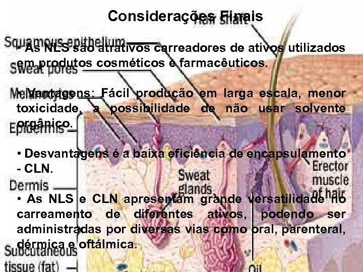 Considerações Finais • As NLS são atrativos carreadores de ativos utilizados em produtos cosméticos