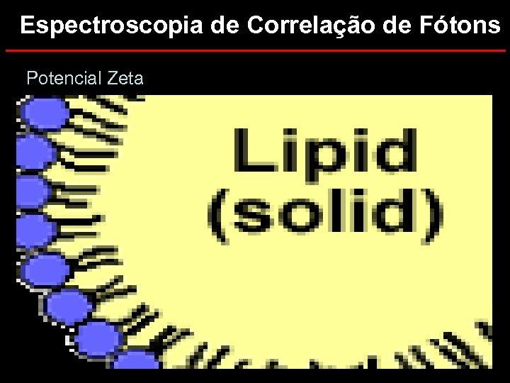 Espectroscopia de Correlação de Fótons Potencial Zeta