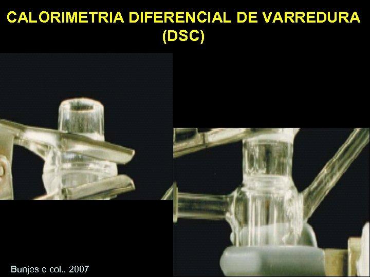 CALORIMETRIA DIFERENCIAL DE VARREDURA (DSC) Bunjes e col. , 2007