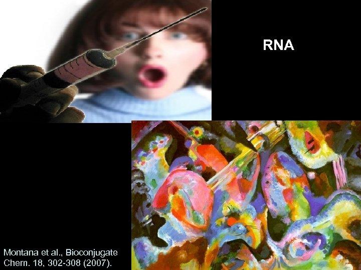 RNA Montana et al. , Bioconjugate Chem. 18, 302 -308 (2007).