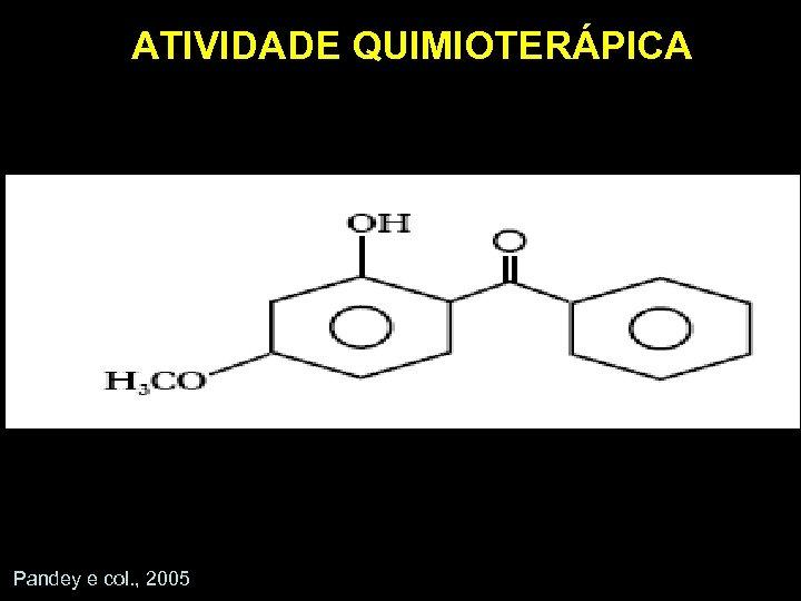 ATIVIDADE QUIMIOTERÁPICA Pandey e col. , 2005