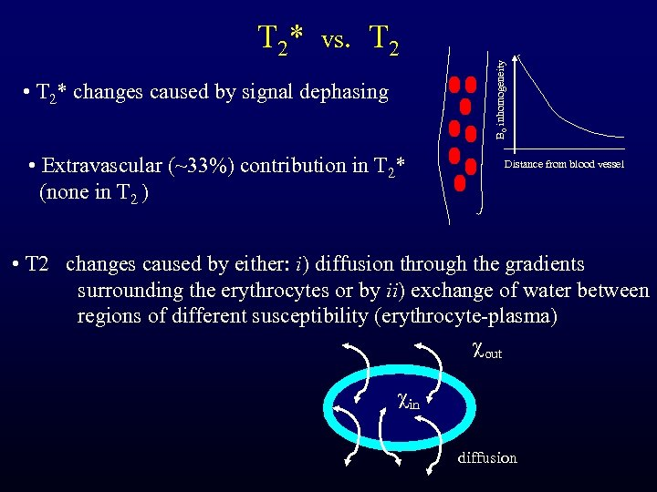 vs. T 2 • T 2* changes caused by signal dephasing • Extravascular (~33%)