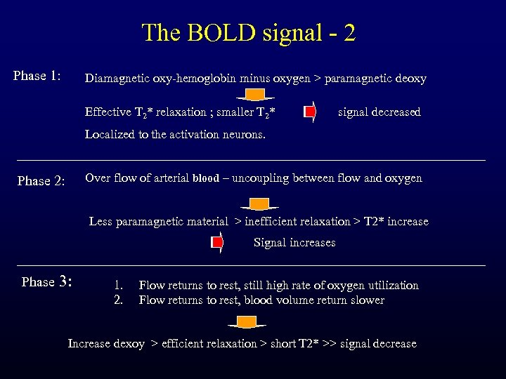 The BOLD signal - 2 Phase 1: Diamagnetic oxy-hemoglobin minus oxygen > paramagnetic deoxy