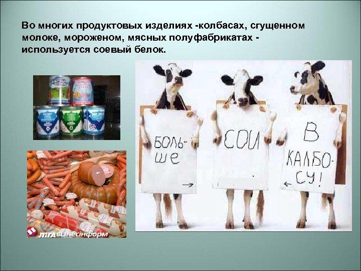 Во многих продуктовых изделиях -колбасах, сгущенном молоке, мороженом, мясных полуфабрикатах используется соевый белок.