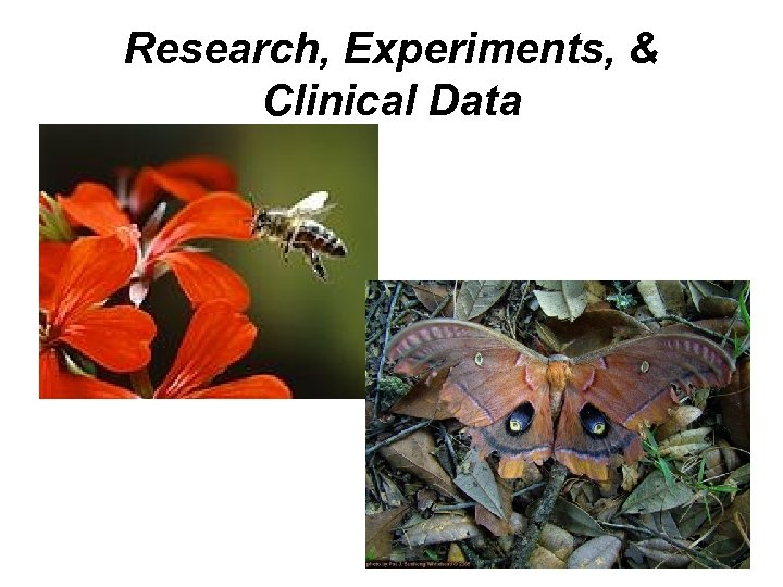 Research, Experiments, & Clinical Data
