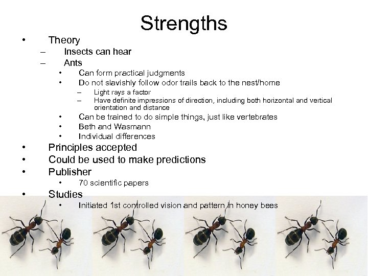 • Theory – – Insects can hear Ants • • Can form practical